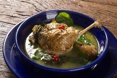 Penchez-vous avec de la sauce à tucupi et le poivre - plat brésilien traditionnel photo libre de droits