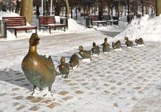 Penchez-vous avec des canetons en parc de couvent de Novodevichy photo libre de droits