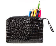 Pencil bag. Black pencil bag with many coloring pencil on white background Royalty Free Stock Photo