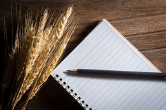 Pencil and book with barley on wood table. Royalty Free Stock Images