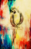 Pencil deawing parrot on old paper, vintage paper and old structure. Royalty Free Stock Photo