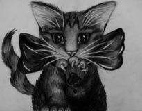 Pencil drawing of closeup of portrait of kitten isolated on grey background, little cat in black and white