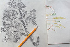 Pencil Drawing Creative Stock Images