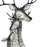 A family of deers on a watercolor background. Pencil drawing deers mom, dad and baby-fawn on a watercolor background Royalty Free Stock Images