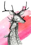 A family of deers on a watercolor background. Pencil drawing deers mom, dad and baby-fawn on a watercolor background Stock Photos