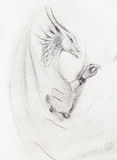 Pencil drawing dragon on old paper background. Pencil drawing dragon on old paper background Stock Photo