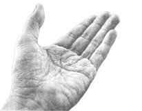 Pencil Drawing of a Hand Stock Photography