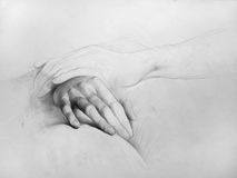 Pencil drawing (Hands, Composition, Anatomic drawing). This is a drawing made by me in my first years of studies. The technique that I used is pencil on a paper royalty free illustration