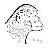Pencil drawing monkey,vector illustration Stock Image