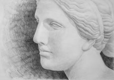Free Pencil Drawing Of A Plaster Model Of The Head Of Venus Stock Photos - 213566613