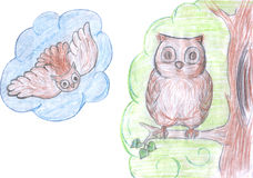 Pencil drawing of owl. Kid`s pencil drawing of owl, colored sketch stock illustration