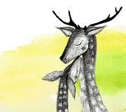 Pencil drawing of a pair of deer on a watercolor background. Isolated illustration. Pencil drawing deers mom and baby on a watercolor background Stock Photo