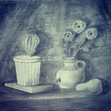 Pencil drawing shadows. Pencil drawing of an objects arrangement: a pear fruit next to 3 flowers in a vase and having a cactus pot sitting on a book. This would stock illustration
