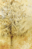 Pencil drawing spruce on old paper background. Royalty Free Stock Images