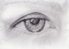 Pencil drawing of woman eye Stock Image