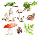 Pencil drawings forest Stock Photography