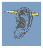 Pencil on ear in engraved style Stock Photo
