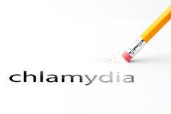Pencil with eraser. Closeup of pencil eraser and black chlamydia text. Chlamydia. Pencil with eraser Stock Photos