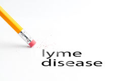 Pencil with eraser. Closeup of pencil eraser and black lyme disease text. Lyme disease. Pencil with eraser Royalty Free Stock Images