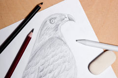 Pencil, eraser and stamp with graphite drawing hawk. Stock Images
