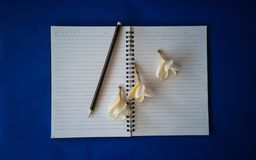Pencil and flowers on a notebook stock images