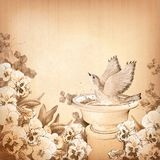 Pencil hand drawing bird in bath and pansy flower Stock Photography