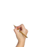 Pencil in hand. Royalty Free Stock Photo