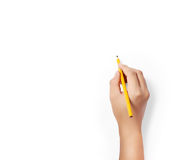 Pencil in hands Royalty Free Stock Images