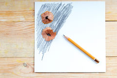 Pencil sharpener shavings on the white paper. Back to school. Copy space stock images