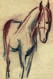 Pencil sketch of a horse Royalty Free Stock Images
