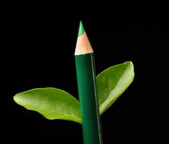 Pencil tree. On black background Stock Image