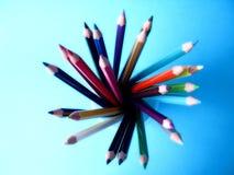 Pencilflower Stock Photos
