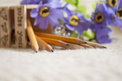 Pencils. Many pencils with purple flowers scattered on the bed Stock Images