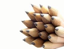 Pencils. Close-up shot of a bunch of wood pencils Stock Photos