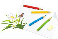 Pencils And Chamomiles Royalty Free Stock Image