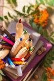 Pencils books concept back school Royalty Free Stock Photo