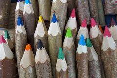 Pencils from forest. Stock Photos