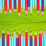 Pencils frame on leaf Stock Image
