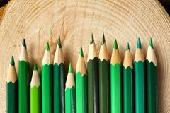 Pencils of green shades. On wooden stump royalty free stock photography