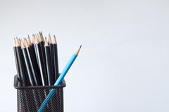 Pencils in a pencil case on isolated. Pencils in a pencil case on white background Royalty Free Stock Images