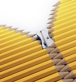Pencils zipper Stock Image