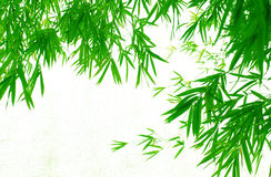 Pendant bamboo leaves background Stock Photos