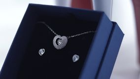 Pendant and Earrings stock video