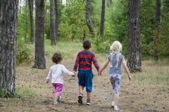 Pendant l'été dans la forêt, le garçon et ses amis marchent Images stock