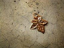 Pendant maple leaf Stock Images