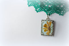 Pendant with natural flowers on the lace choker Royalty Free Stock Image