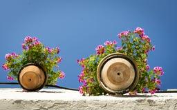 Pendant plant pot. Andalusian colorful geranium in a pendant plant pot Stock Images