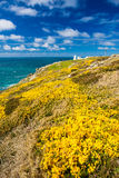 Pendeen Watch Cornwall England Stock Photography