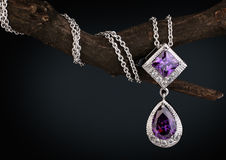 Pendente dei gioielli con l'ametista della gemma sul ramoscello, fondo scuro Immagine Stock