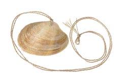 Pendente del Seashell fotografie stock libere da diritti